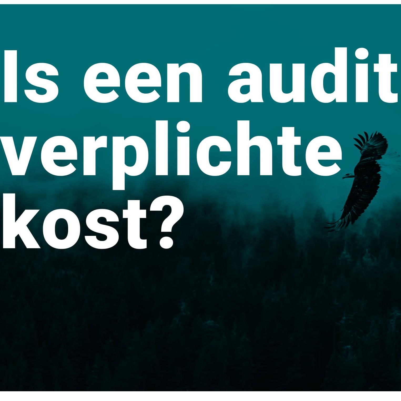 Is een audit verplicht_square