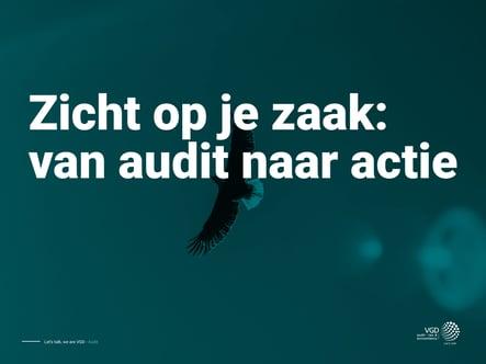 VGD-ebook-audit-v1 (002)-01