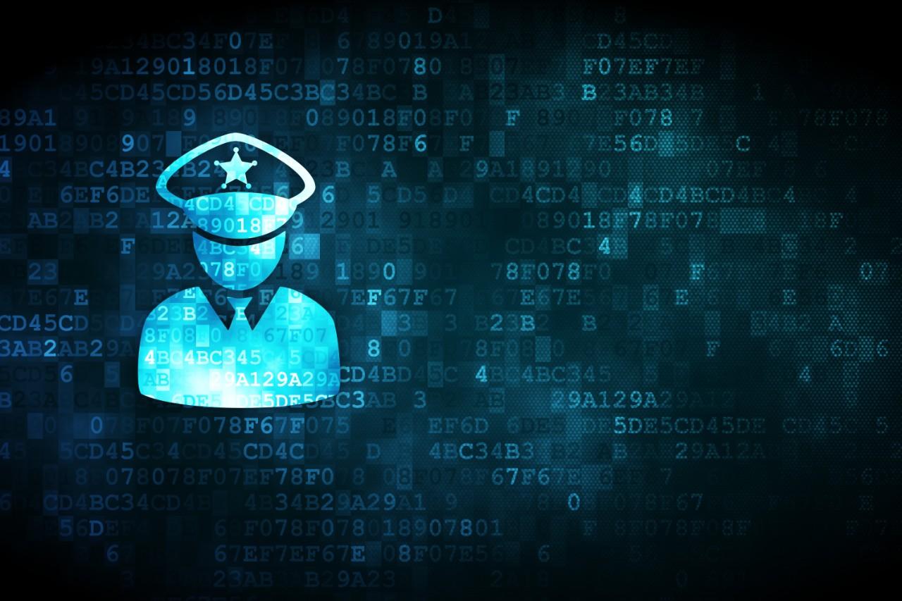 De interne Data Protection Officer (DPO): een positie op losse schroeven?